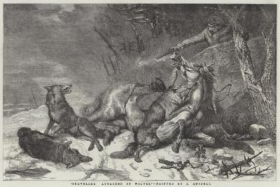 Traveller Attacked by Wolves-Richard Ansdell-Giclee Print