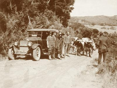 Travellers Posing Beside their Car with Two Oxen and a Cattle Driver--Photographic Print