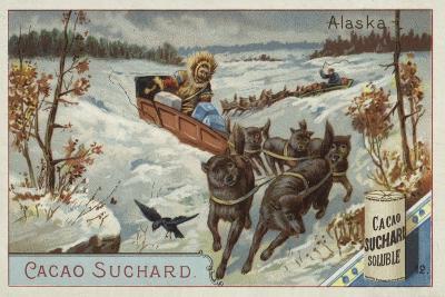 Travelling by Dog Sled, Alaska--Giclee Print