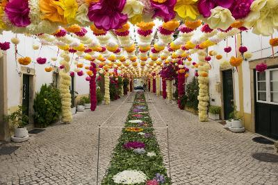 Trays Festival, Neighborhoods are Colorfully Decorated with Paper Flowers and Garlands-Emily Wilson-Photographic Print