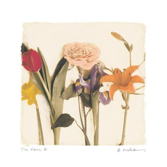 Tre Fiori IV-Amy Melious-Art Print