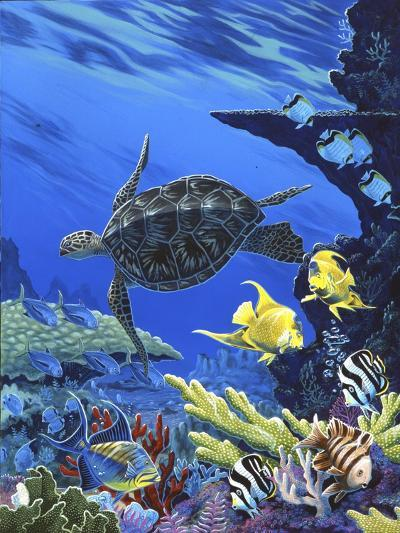 Treasures of the Sea I-Apollo-Giclee Print