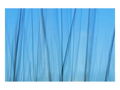 https://imgc.artprintimages.com/img/print/tree-abstraction-iv_u-l-f74knm0.jpg?p=0