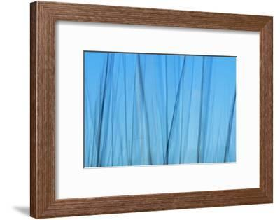 Tree Abstraction IV-Mike Grandmaison-Framed Art Print