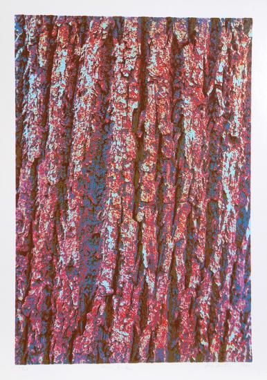 Tree Bark-Max Epstein-Limited Edition