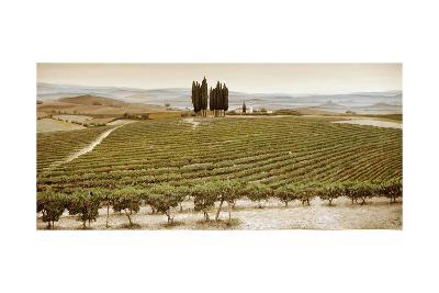 Tree Circle, Tuscany-Trevor Neal-Giclee Print