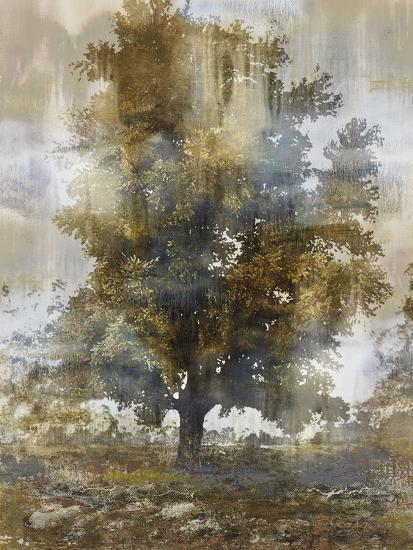 Tree Dreamscape I-Paul Duncan-Giclee Print