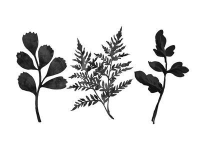 https://imgc.artprintimages.com/img/print/tree-ferns_u-l-f9e8qu0.jpg?p=0