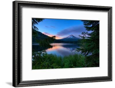 Tree Framed Trillium Lake Reflection, Summer Mount Hood Oregon-Vincent James-Framed Photographic Print
