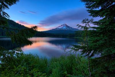 https://imgc.artprintimages.com/img/print/tree-framed-trillium-lake-reflection-summer-mount-hood-oregon_u-l-q1g8ub70.jpg?p=0