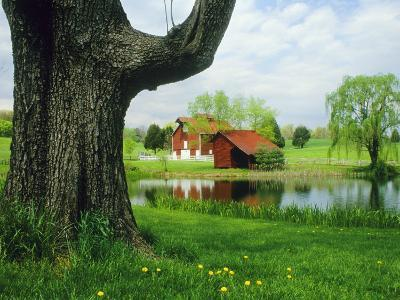 Tree Frames a View of a Farm Reflected in a Pond, Virginia-Annie Griffiths Belt-Photographic Print