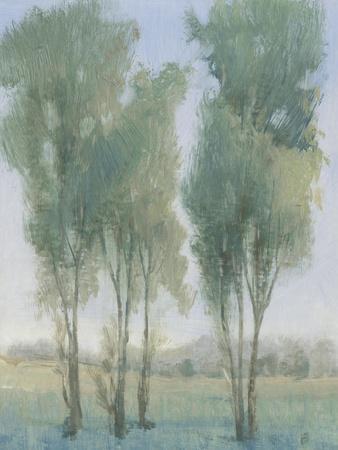 https://imgc.artprintimages.com/img/print/tree-grove-ii_u-l-q1gwgd60.jpg?p=0