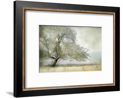 Tree in Field of Flowers-Mia Friedrich-Framed Photographic Print