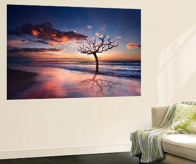 Tree in the Sea-Marco Carmassi-Wall Mural