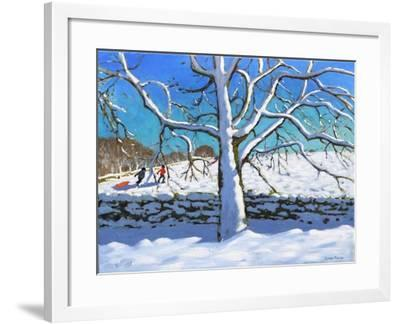 Tree in Winter, Newhaven, Derbyshire, 2017-Andrew Macara-Framed Giclee Print