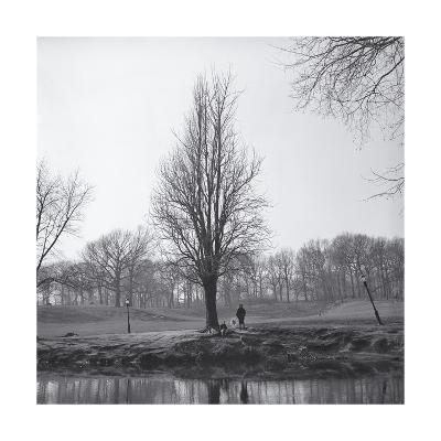 Tree in Winter with Pond-Henri Silberman-Photographic Print
