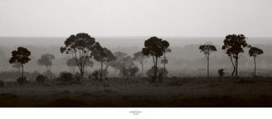 Tree Line-Jorge Llovet-Art Print