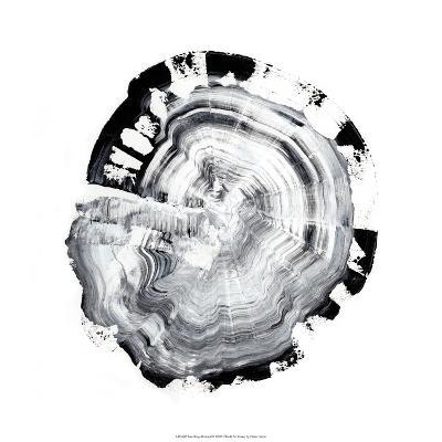 Tree Ring Abstract III-Ethan Harper-Giclee Print
