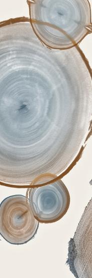 Tree Ring H-Albert Koetsier-Art Print