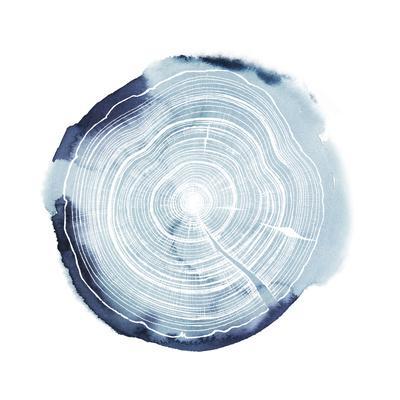 https://imgc.artprintimages.com/img/print/tree-ring-overlay-iii_u-l-q19bkge0.jpg?p=0