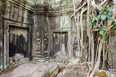 Tree Roots Growing on Ta Prohm Temple (Rajavihara) Ruins, Angkor, UNESCO World Heritage Site-Jason Langley-Photographic Print