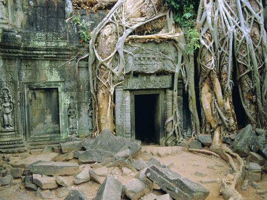 Tree Roots Overgrowng Temple, Ta Prohm, Angkor, Cambodia, Asia-Bruno Morandi-Photographic Print