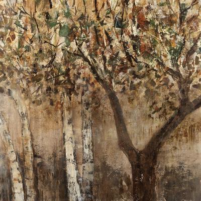 Tree Shade-Tim O'toole-Giclee Print