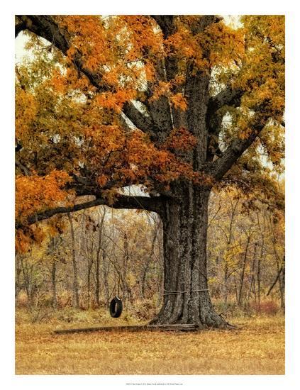 Tree Swing-Danny Head-Giclee Print