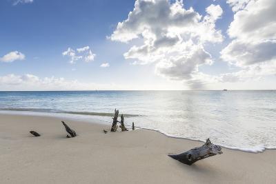Tree Trunks on the Beach Framed by the Crystalline Caribbean Sea, Ffryes Beach, Antigua-Roberto Moiola-Photographic Print