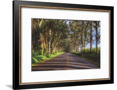 Tree Tunnel to Old Koloa Town, Kauai Hawaii-Vincent James-Framed Photographic Print