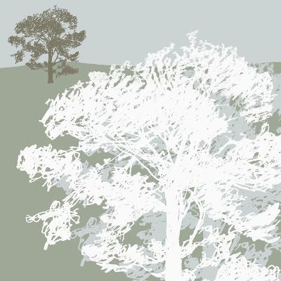 Treeline Sycamore-Sarah Cheyne-Giclee Print