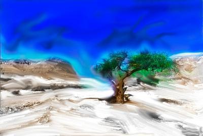 Trees Alive I-Ynon Mabat-Art Print