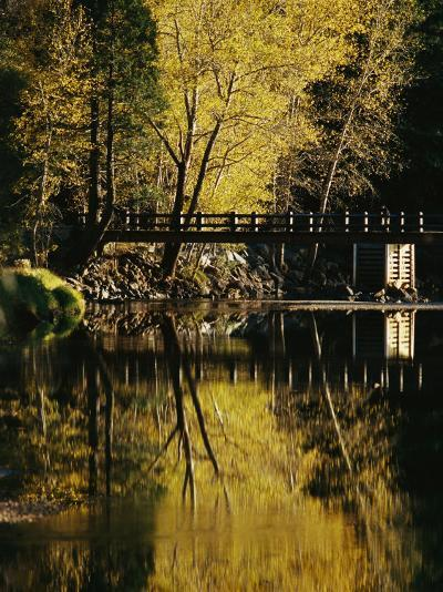 Trees and a Footbridge are Reflected in the Merced River-Marc Moritsch-Photographic Print