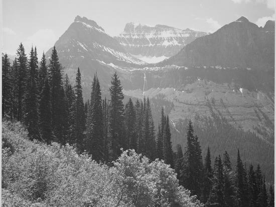 "Trees And Bushes In Foreground Mountains In Bkgd ""In Glacier National Park"" Montana. 1933-1942-Ansel Adams-Art Print"
