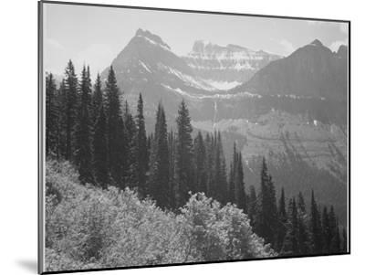 """Trees And Bushes In Foreground Mountains In Bkgd """"In Glacier National Park"""" Montana. 1933-1942-Ansel Adams-Mounted Art Print"""