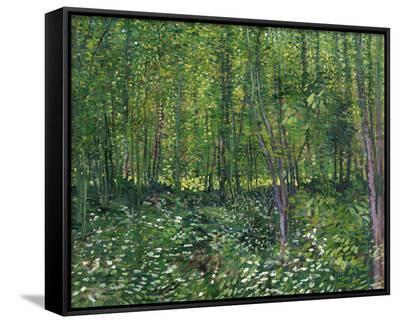 Trees and Undergrowth, c.1887-Vincent van Gogh-Framed Canvas Print