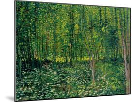 Trees and Undergrowth, c.1887-Vincent van Gogh-Mounted Giclee Print