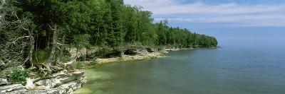 Trees at the Lakeside, Cave Point County Park, Lake Michigan, Door County, Wisconsin, USA--Photographic Print