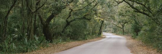 Trees Both Sides of a Road, Fort Clinch State Park, Amelia Island, Florida, USA--Photographic Print