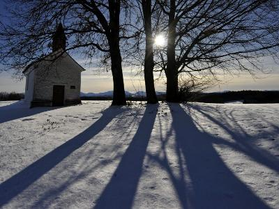 Trees Cast their Shadows Next to the Chapel Near Feldkirchen, Southern Germany--Photographic Print