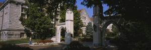 Trees in a Campus, Sample Gates, Indiana University, Bloomington, Monroe County, Indiana, USA