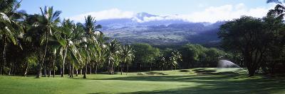 Trees in a Golf Course, Makena Golf Course, Makena, Maui, Hawaii, Usa--Photographic Print