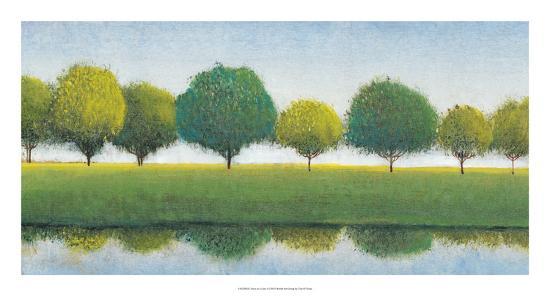Trees in a Line I-Tim OToole-Art Print