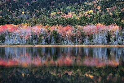 Trees in Autumn Colors Casting Reflections into a Calm Lake-Robbie George-Photographic Print