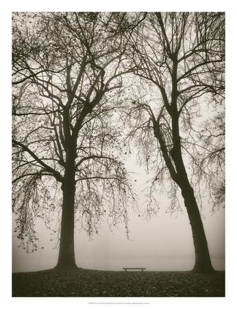 https://imgc.artprintimages.com/img/print/trees-in-fog-ii_u-l-f8mlmq0.jpg?p=0