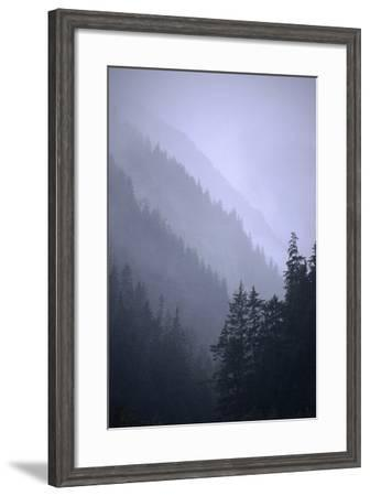 Trees in Fog Seward Southcentral Ak Winter Scenic-Design Pics Inc-Framed Photographic Print