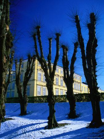 https://imgc.artprintimages.com/img/print/trees-in-winter-in-frederiksberg-have-copenhagen-denmark_u-l-p5ecet0.jpg?p=0