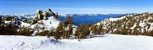 Trees on a Snow Covered Landscape, Heavenly Mountain Resort, Lake Tahoe