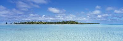 Trees on an Island, Rangiroa, French Polynesia--Photographic Print