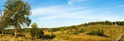 Trees on Hills, Little Round Top, Gettysburg, Adams County, Pennsylvania, USA--Photographic Print